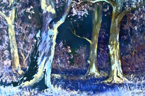 moonlit-bush-copy