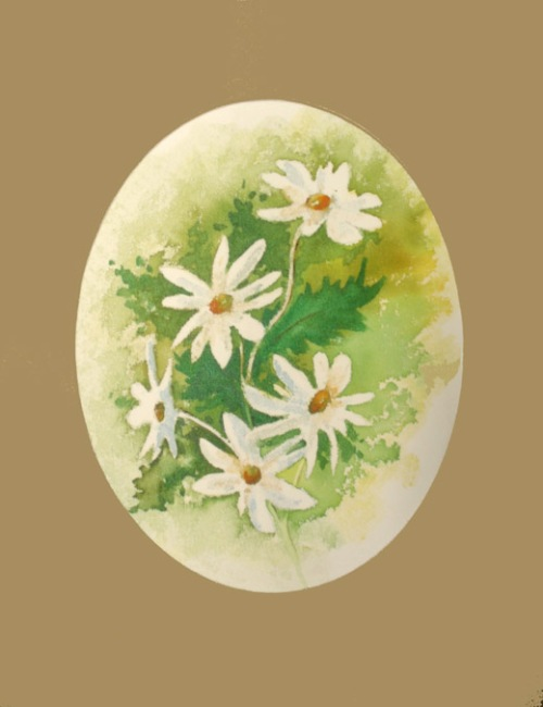wc-daisies-2-fin