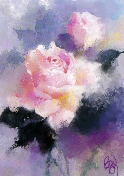 pink rose _bev_2007 sm